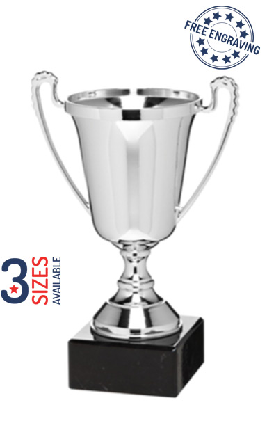 The Moment Silver Presentation Cup with Metal Bowl- ET369.62