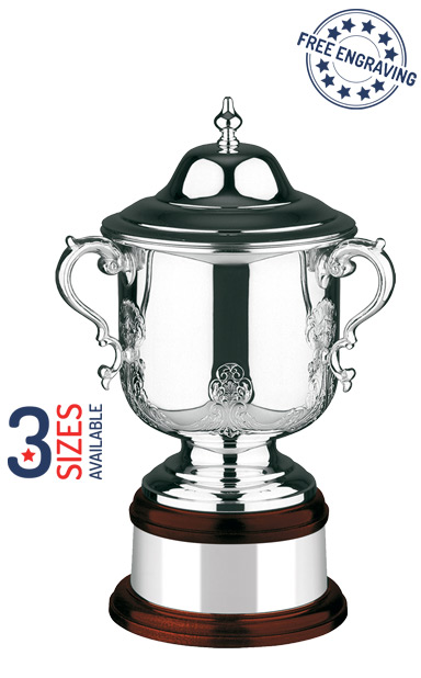 Silver Plated The League Champions Cup- Hand Chased - L560